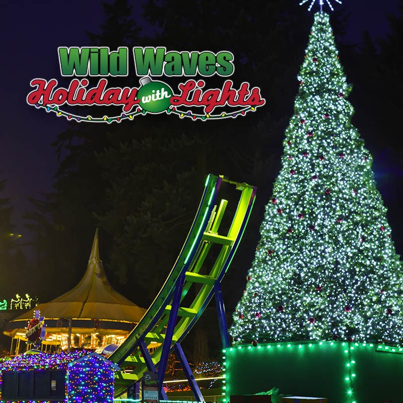 Wild Waves Holiday with Lights Logo